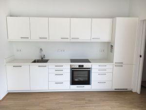 WG-Zimmer-Wohnung-Graz-558758