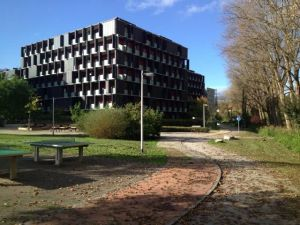 WG-Zimmer-Wohnung-Innsbruck-835333